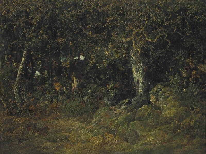 Franske mesterværker Rousseau
