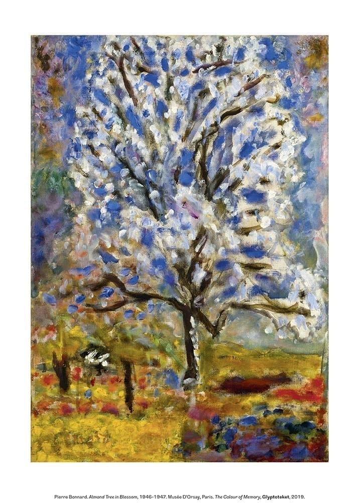 Pierre Bonnard Almond Tree Blossom