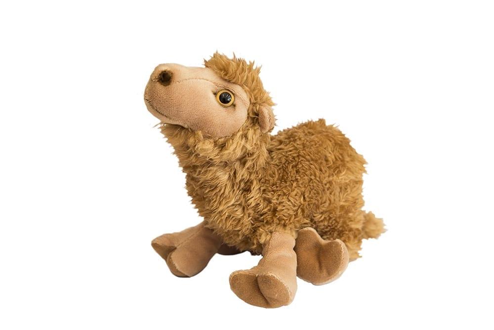 Lille dromedar bamse